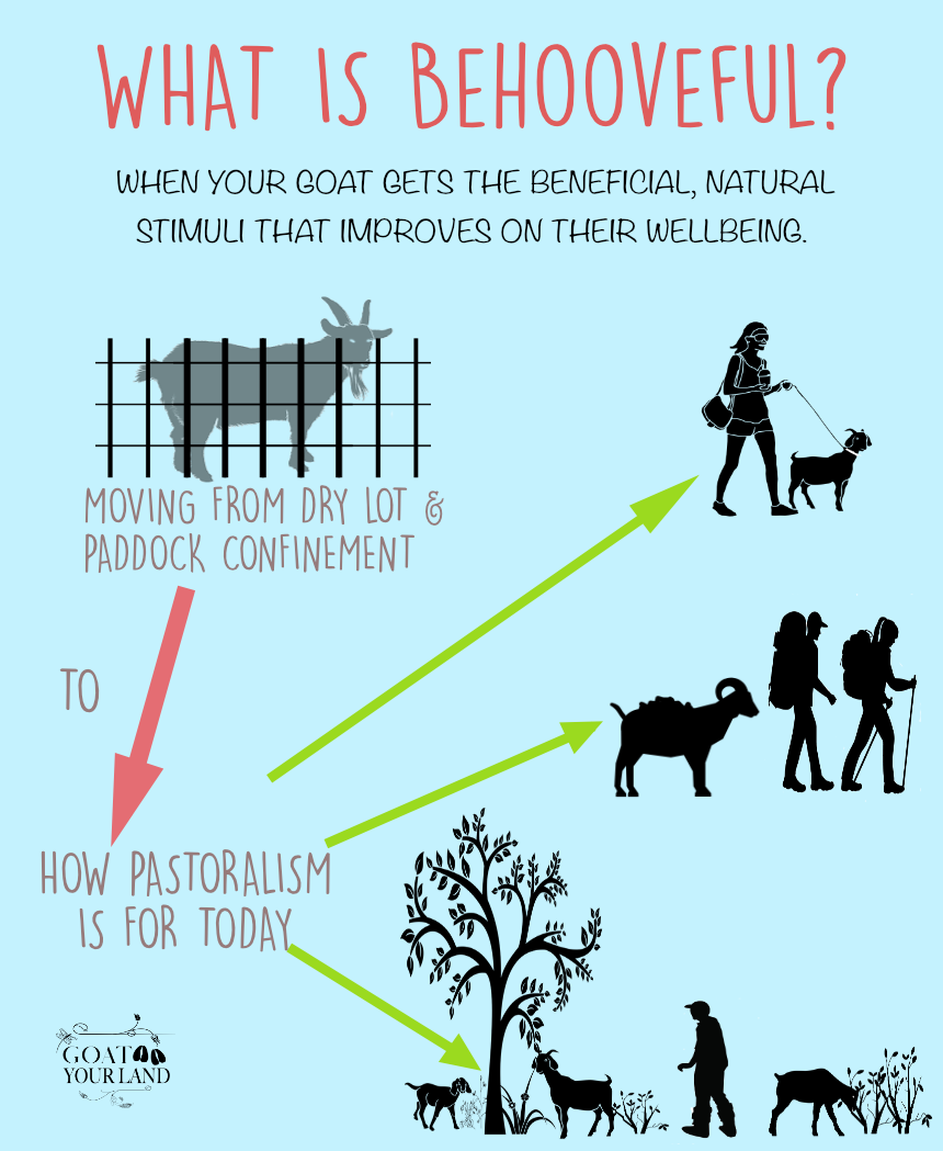 BENEFITS OF GOAT GRAZING